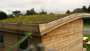 Aspin Roof
